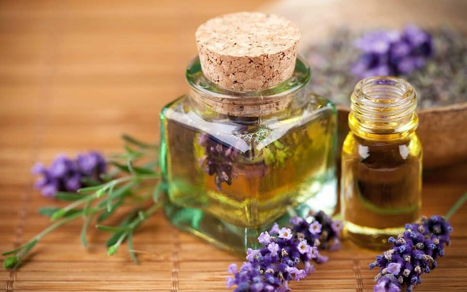 What Are the Best Essential Oils to Start With
