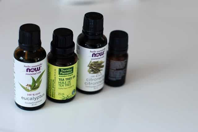 Best Essential Oils for Sinusitis eucalyptus