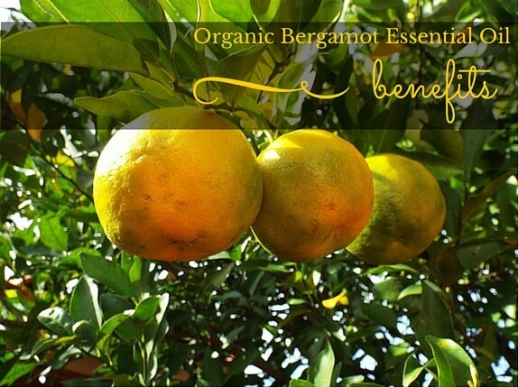 Organic Bergamot Essential Oil Benefits