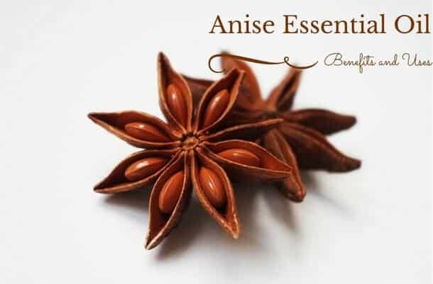 Anise Essential Oil Benefits and Uses