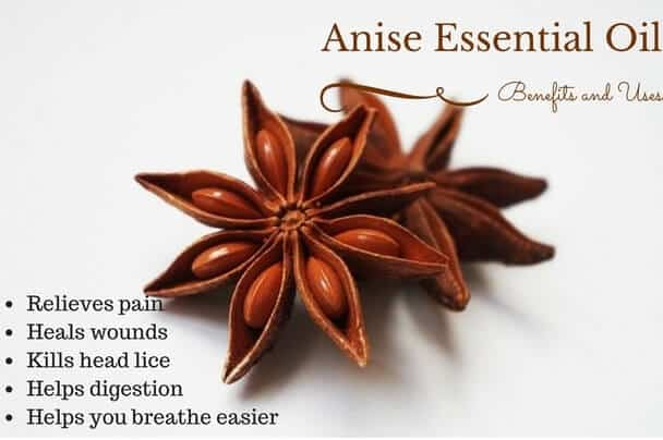 Anise Essential Oil Health Benefits and Uses Listed