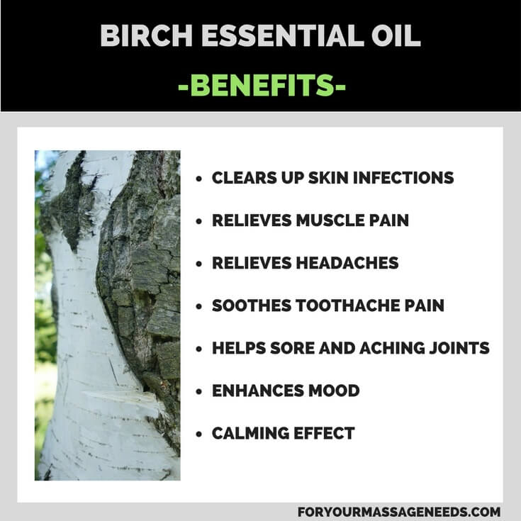 Birch Essential Oil Health Benefits Listed