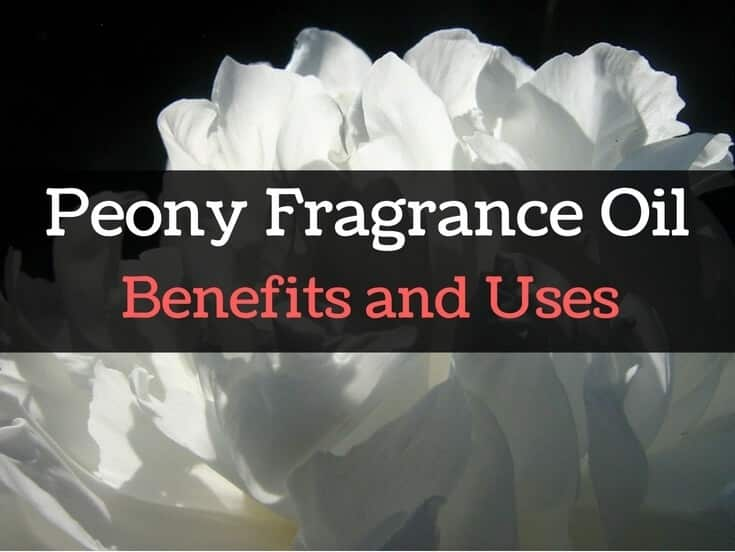 Peony Essential Oil and Fragrance Oil Benefits