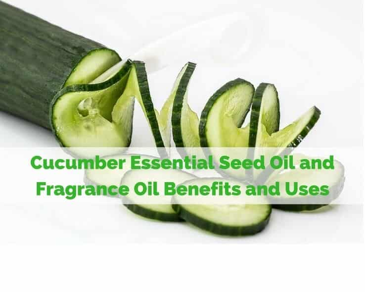 Cucumber Essential Seed Oil and Fragrance Oil Benefits and Uses