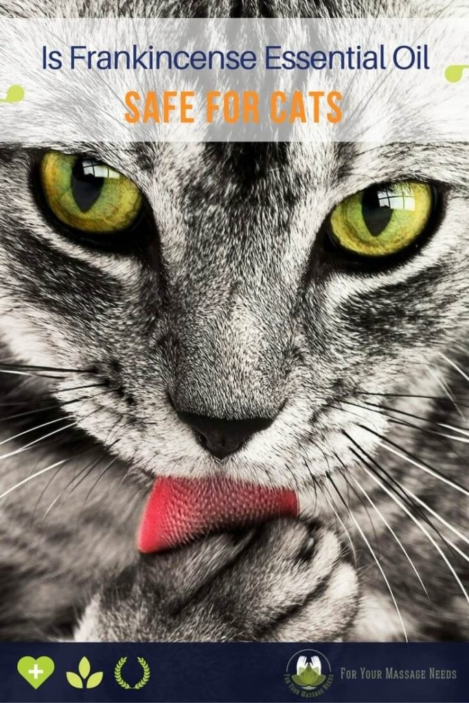Is Frankincense Safe for Cats